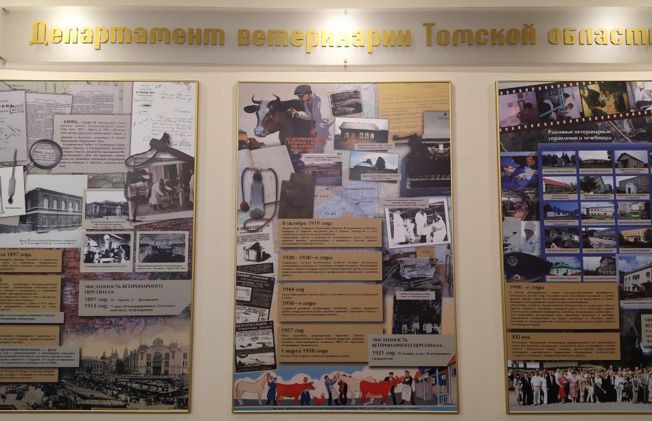Популяризация  первой помощи при  неотложных  состояний  в виде практического занятия в Департаменте ветеринарии Томской области